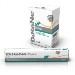 DiReNe kompletteringsfoder för njurar Pasta 15 ml