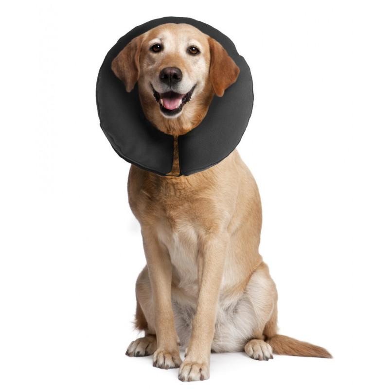 Zencollar Uppblåsbar Krage För Hund Katt Veterinärbutiken