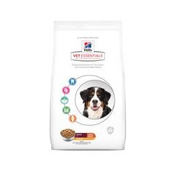 Hill's VetEssentials Adult Large Breed hund (13 kg)