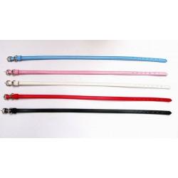 Personalize halsband för katt & liten hund