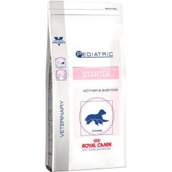 Royal Canin Starter Medium dog